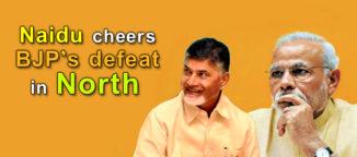 Nara Chandrababu Naidu telugu news