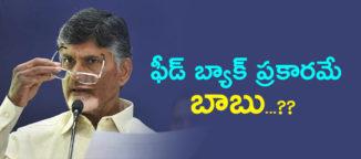 narachandrababunaidu-telugudesam party
