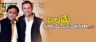 grand-alliance-in-loksabha-elections