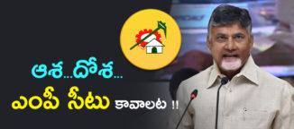 ayyannapathrudu son wants parlament seat