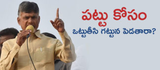 chandrababu naidu Telugu News Andhra Pradesh News