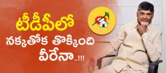 nara chandrababunaidu mlc elections