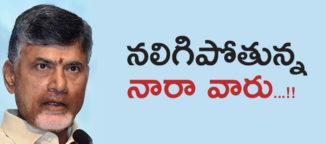nara chandrababunaidu in family politics