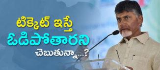 chandrababu naidu vs senior minister