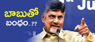 chandrababunaidu alliance to indiannational congress