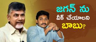 narachandrababunaidu strenghthen congress party