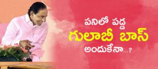 kchandrasekharrao-busy-with-welfare-schemes