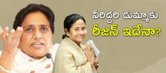 mamathabenerjeemayavathi
