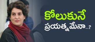 priyankagandhi-uttarpradesh-campaign