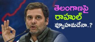 rahul gandhi may contest from khammam