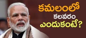 bharthiya-janatha-party-internal-survey