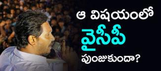 ysr-congress-party-election-telugudesam