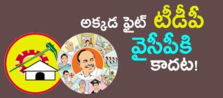 ysr-congressparty-in-santhanuthapadu-constiuency