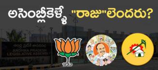raju-community-in-andhrapradesh-assembly