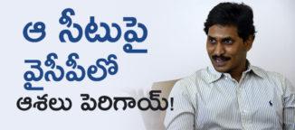 ysr-congress-hopes-on-tdp-seat
